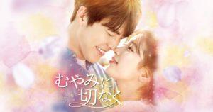 韓国ドラマ|むやみに切なくを日本語字幕で見れる無料動画配信サービス