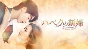 韓国ドラマ|ハベクの新婦を日本語字幕で見れる無料動画配信サービス