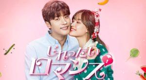 韓国ドラマ|じれったいロマンスを日本語字幕で見れる無料動画配信サービス