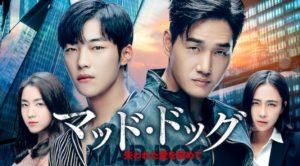 韓国ドラマ|マッドドッグを日本語字幕で見れる無料動画配信サービス