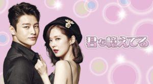 韓国ドラマ|君を憶えてるを日本語字幕で見れる無料動画配信サービス