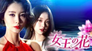 韓国ドラマ|女王の花を日本語字幕で見れる無料動画配信サービス