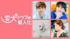韓国ドラマ|愛犬トゥブの擬人化を日本語字幕で見れる無料動画配信サービス