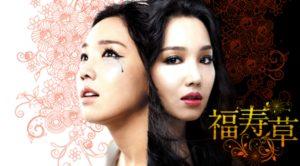 韓国ドラマ|福寿草を日本語字幕で見れる無料動画配信サービス
