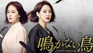 韓国ドラマ|鳴かない鳥を日本語字幕で見れる無料動画配信サービス