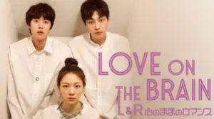 韓国ドラマ|LOVE ON THE BRAIN L&R心のままロマンスを日本語字幕で見れる無料動画配信サービス