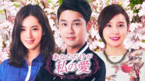 韓国ドラマ|あなただけが私の愛を日本語字幕で見れる無料動画配信サービス