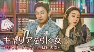 韓国ドラマ キャリアを引く女を日本語字幕で見れる無料動画配信サービス