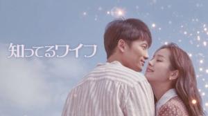 韓国ドラマ|知ってるワイフを日本語字幕で見れる無料動画配信サービス