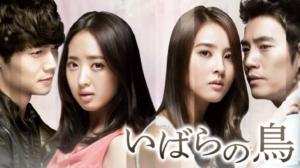 韓国ドラマ いばらの鳥を日本語字幕で見れる無料動画配信サービス