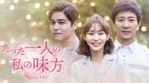 韓国ドラマ|たった一人の私の味方を日本語字幕で見れる無料動画配信サービス