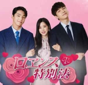 韓国ドラマ|ロマンス特別法を日本語字幕で見れる無料動画配信サービス