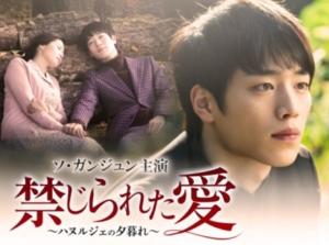 韓国ドラマ 禁じられた愛を日本語字幕で見れる無料動画配信サービス