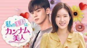 韓国ドラマ 私のIDはカンナム美人を日本語字幕で見れる無料動画配信サービス