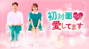韓国ドラマ|初対面だけど愛してますを日本語字幕で見れる無料動画配信サービス